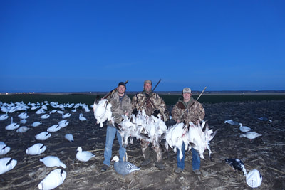 texas waterfowl guide